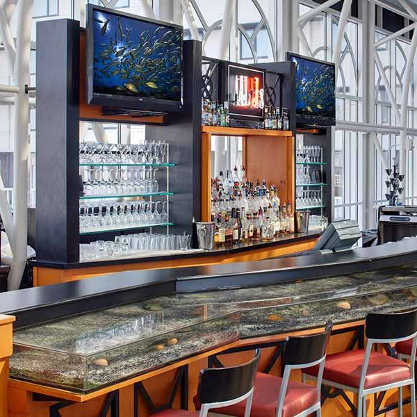Al J's Conservatory Bar with live fish tank bar and two TVs